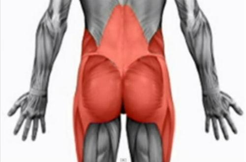 Stabi-Training: Muskeltraining für Läufer – Rumpf und Hüfte