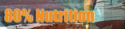 Thumbnail image for Laufen: Die Lizenz zum Abnehmen