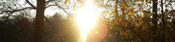 Thumbnail image for Wenn nicht jetzt, wann dann? – Wie ihr euch auch in Herbst und Winter zum Laufen motivieren könnt