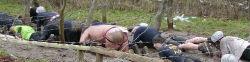 Thumbnail image for Laufblockade & Anekdoten aus dem Leben der Läufer