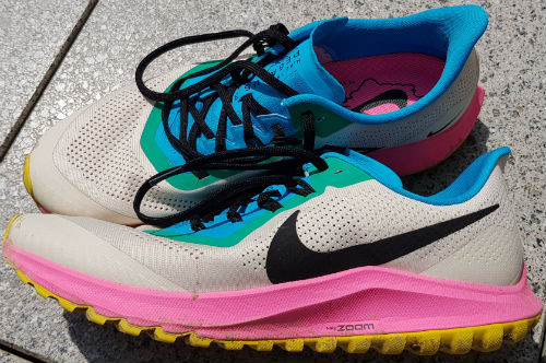 Nike Air Zoom Pegasus 36 Trail GORE TEX Trail Laufschuh für
